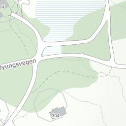 øyungen kart Øyungen Hyttefelt 310, 7380 Ålen på 1881 kart
